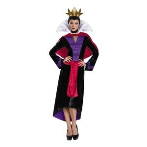 Disney Villain Adult Costume